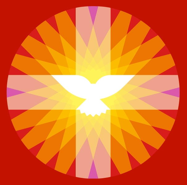 toelichting logo pkn